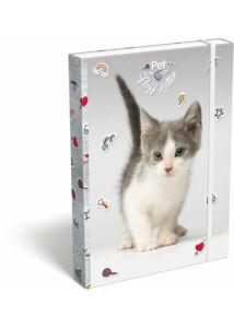 Füzetbox A/4 Pet Fluff Kitten