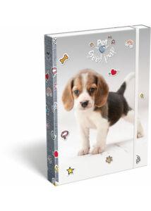 Füzetbox A/4 Pet Good pup