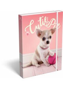 Füzetbox A/5 Pet Cutie Pie