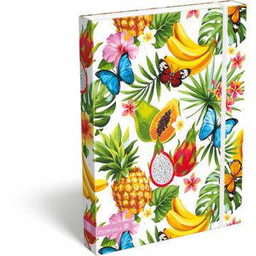 Füzetbox A/4 Cornell Tropical