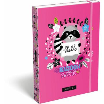 Füzetbox A/5 Lollipop Raccoon