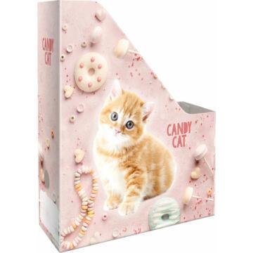Irattartó Papucs A/4 Kis Bagoly Candy Cat