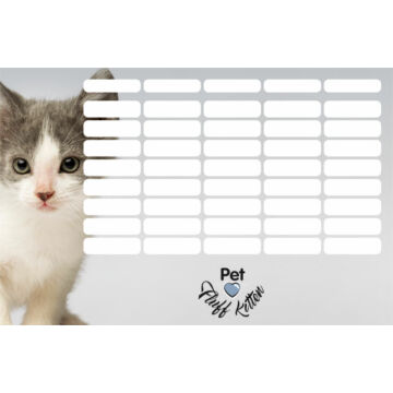 Órarend Pet Fluff Kitten