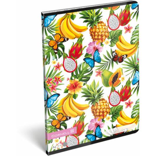 Füzet tűzött A/4 vonalas 81-32 Cornell Tropical Fruits