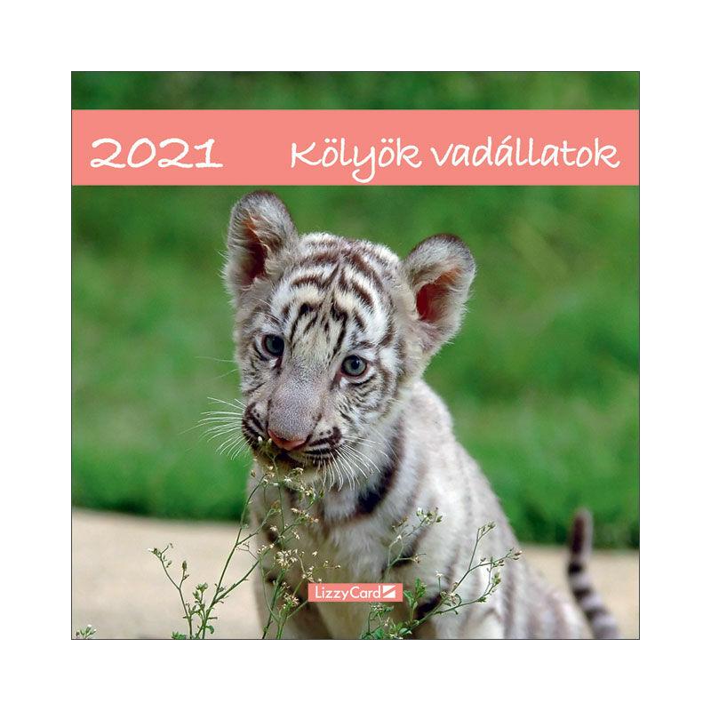 Falinaptár lemez nagy 2021 Kölyök vadállatok